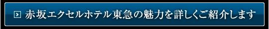 赤坂エクセルホテル東急の魅力を詳しくご紹介します