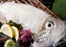 長浜魚市場より玄界灘の幸