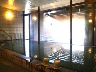 日本一の強アルカリ泉
