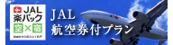 JAL 航空券付