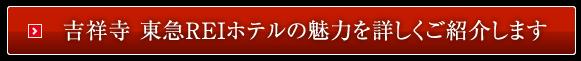 吉祥寺 東急REIホテルの魅力を詳しくご紹介します
