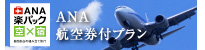 ANA航空券付